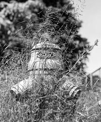 Tryin to hide (widmerstefan) Tags: bw analog hydrant mediumformat schweiz noiretblanc sw bern analogue 6x7 monochrom schwarzweiss kodaktmax100 mittelformat mamiyarz67 sekor110mm