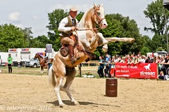 Pintos_Equitana_2016-9901 (tokerpress) Tags: messe pferde shou pintos tokerpress alexandertoker equitanaopenair ctokerpress2016 gestütgoldenepintos