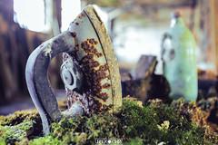 Abandoned Factory (Urbex Diary) Tags: travel urban canon lost eos power place decay abandon architektur 16 exploration 35 industrie f28 ue verlassen gasse 6d urbex verfallen lagerhaus