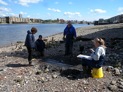 Recording one of the rudders (Thames Discovery Programme) Tags: london archaeology training community riverthames rotherhithe thamesdiscoveryprogramme fsw03