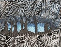 FLORESTA (suzanasacchipadovano) Tags: co de tristeza galinha pessoas beijo mulher banana corao bode floresta mos tesoura vitrine artista sorte abacaxi sapato asas cadela chuchu panela astrologia penca depresso velhodiabopincispssarosculosmodelonuvemnariz palhaomandioca