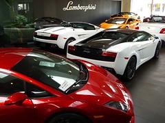 Symbolic Motors Showroom (Chance Hales) Tags: white continental spyder motors lamborghini bentley symbolic gallardo gtc bicolore lp5604 lp5502