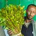 Khat-Dealer in Hargeisa, Somaliland