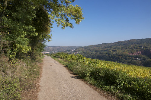 Moselle valley - 2