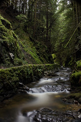 Milky (DMeadows) Tags: wood trees nature water forest woodland river scotland path walk argyll glen trail burn pucks davidmeadows dmeadows yahoo:yourpictures=waterv2 yahoo:yourpictures=light