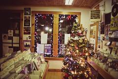 (sarah hall.) Tags: christmas tree newfoundland stjohns fredsrecords