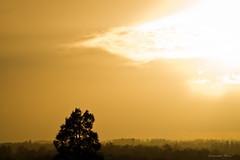 Sunset (EmmanuelTh) Tags: orleans soir sal552002