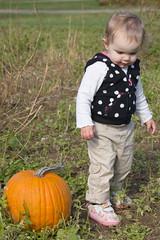 Two Pumpkins (Craig Dyni) Tags: girl pumpkin toddler madelyn alannah dyni