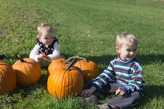 Pumpkins (Craig Dyni) Tags: boy girl colin pumpkin toddler finn madelyn alannah dyni