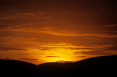 sunset from my garden #2 (Ron Layters) Tags: trees sunset england orange home silhouette yellow clouds gold even