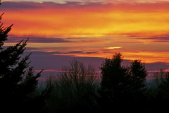 Purple Sky (Distant Hill Gardens) Tags: sunset red sky orange silhouette clouds square view purple dusk newengland newhampshire nh squareformat sailorsdelight spruce redskyatnight purplesky redclouds walpolenh distanthill walpolenewhampshire d5100 nikond5100 distanthillgardens