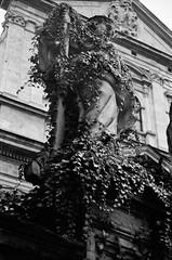 0008_0019 (www.cjo.info) Tags: urban sculpture building art film monochrome statue architecture 35mm blackwhite stonework poland krakow carving analogue krakw cracow ilford oldbuilding easterneurope ilfordxp2400