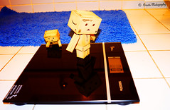 ~Weight~ (orisits_photography) Tags: amazon danbo danboard orisits