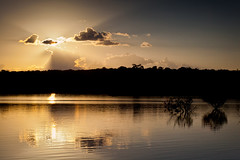 """Nightfall on Rio Negro • <a style=""""font-size:0.8em;"""" href=""""http://www.flickr.com/photos/55747300@N00/6693262433/"""" target=""""_blank"""">View on Flickr</a>"""