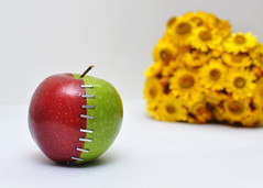 Reunite [Explored] (Bhaskar Dutta) Tags: red india flower colour green love apple reunion yellow landscape photography stitch affection stock creative staple reunite sepaeartion