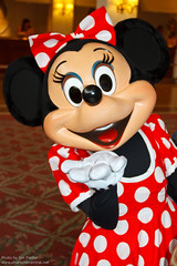 DLP Dec 2011 - Meeting Minnie Mouse
