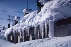 Snow cornice and icicles (threepinner) Tags: winter house snow ice japan diy hokkaido pentax north 北海道 日本 positive tamron 冬 hokkaidou mikasa mzm selfdeveloped 三笠 northernjapan 35135mm 北日本 gettyimagesjapan12q1 diydeveolpment