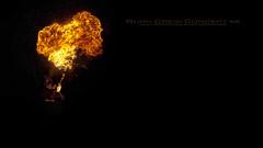 Burn Crew Concept  #8 (Paul Rodrigues Photographies -OFF-) Tags: paris france fire nikon flames fireman fuego bp feu bcc palaisdetokyo fireeater chamas flammes d90 cracheurdefeu cracheurs burncrewconcept fireater baladesparisiennes rodriguespaulphotographies
