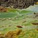 Dallol Volcano Acid pond