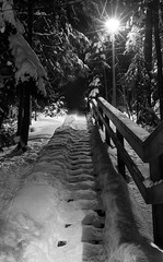 IMG_4271.jpg (Antti Tassberg) Tags: longexposure winter blackandwhite bw snow monochrome night stairs espoo suomi finland 50mm europe darkness eu stairway f16 staircase scandinavia lumi talvi snowscape y porras portaat kaide luminen rappuset laaksolahti hanki huvilaharju ginordicjan12 ensimminenhuvilapolku