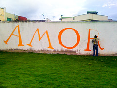 AMOR (_Loaf_) Tags: streetart roma art southamerica animal wall del america pared photography graffiti quito ecuador stuffed mural arte amor wand kunst south urbana sur urbano loaf brigade americadelsur stuffedanimalbrigade
