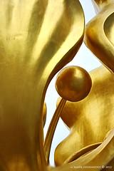 Detail of the Golden Bauhinia Flower Statue, Hong Kong. (XavierParis) Tags: nikon d700 xavierhernandez xyber75