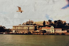 the Bird of Alcatraz (jjamv) Tags: sf sanfrancisco california usa texture water island bay prison jail alcatraz sanfranciscobay bodypainting therock magicunicornverybest mygearandmepremium california88 jjamv texturebypicnik vpu1 julesvtravel rememberthatmomentlevel1 rememberthatmomentlevel2 vigilantphotographersunite vpu2 vpu3 vpu4 vpu5 vpu6 vpu7