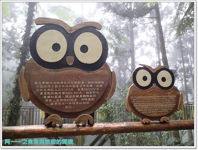 南投溪頭自然教育園區台大image047