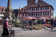 366-127 (bine77) Tags: street people nature fountain canon herbs brunnen menschen marketplace pancake 24mm markt projekt marktplatz 366 schwabach streetphotographie eos100d