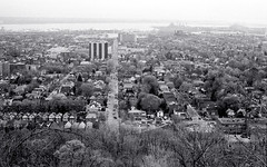 The View from the Mountain_ (Bill Smith1) Tags: hc110b olympusom4 hamiltonon berggerbrf400 zuiko50f14lens filmshooterscollective spring2016 billsmithsphotography