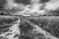(Fabio De Santis) Tags: longexposure sky italy roma nature clouds landscape photography blackwhite nikon italia nuvole time horizon sigma cielo lazio cerveteri etruria ndfilter necropoli etrusco banditaccia nd1000 bigstopper d5100 fabiodesantis