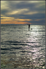 Whassup (waynetoneill) Tags: sunset silhouette island board paddle sup moreton sonyrx100