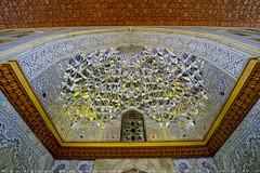 Roof decoration (T   J ) Tags: iran fujifilm shiraz xt1 teeje shahecheragh fujinon1024mmf4