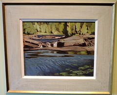 Falls on the Little Mississippi River (Will S.) Tags: ontario canada art gallery artgallery canadian trunks emilycarr mypics kleinburg aboriginalart canadiana groupofseven tomthomson mcmichael mcmichaelcanadianartcollection mcmichaelgallery