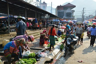 bac ha -vietnam 35