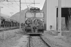 domo II set 32 #11 (train_spotting) Tags: tigre trenitalia tigrone domo2 trenitaliacargo e652137 beuracardezza nikond7100 divisionecargo ticargo