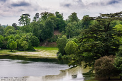 ClaremontLG_DSC7456 (Nick Woods Photography) Tags: trees lake green nature water landscape cloudy nt surrey greenery claremont nationaltrust cloudysky lakescene waterscape waterreflections treetrunks treereflections claremontlandscapegarden
