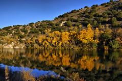 Reflejos en la tarde a las orillas de Duero. (R.S. Antonio) Tags: spain soria castillayleon