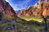 A moment in Zion during the Fall (Deby Dixon) Tags: travel fall tourism nature outdoors photography utah nationalpark nikon hiking exploring redrocks zion zionnationalpark deby allrightsreserved 2011 leaveschangingcolor geologicalhistory debydixon debydixonphotography
