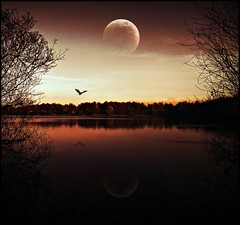 perfect world (sillitilly) Tags: moon reflection nature water silhouette pond picnic abigfave masterclasselite