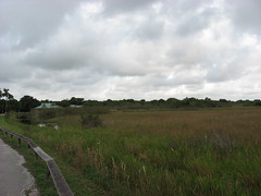 Everglades National Park Grasscape (stinkenroboter) Tags: florida everglades evergladesnationalpark