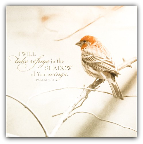 """I will take refuge in the shadow of Your wings."" Psm. 57:1"