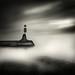 Sailor's Point