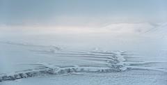 Vision (photo MarcoG) Tags: umbria fosso castelluccio pianogrande mergani