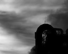Sumitomo cement factory (StephenCairns) Tags: morning blackandwhite bw industry birds japan pipes spire size   gifu flockofbirds  motosu   industrialphotography  blackshapes canon50d stephencairns 70200mmf4isusm sizedifferences 50dcanon  sumitomocement  sumitomocementfactory flockof44birds
