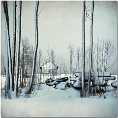 Winter (pixel_unikat) Tags: winter house snow tree stone landscape austria hut granite textured mühlviertel idream memoriesbook thankstoskeletalmessfortextures inspiredchoice