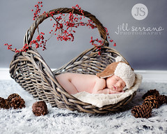 Sleep baby bear - Featured on Explore! (Jill Serrano Photography) Tags: hat basket naturallight newborn nikond700