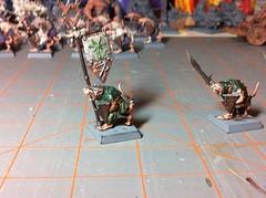 Clanrat Standard Bearer (benjibot) Tags: fantasy warhammer skaven clanrats