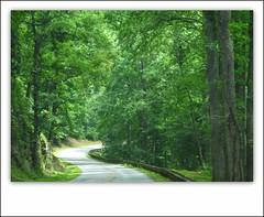 Winding Way (ZenKitty /Babushka) Tags: mountains nc blueridgeparkway picnik