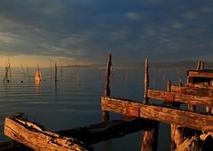 Trasimeno Lake (da.geli) Tags: sunset sky italy water clouds umbria fishingnet lagotrasimeno trasimenolake mygearandme mygearandmepremium